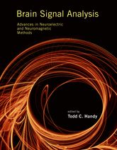 Brain Signal Analysis: Advances in Neuroelectric and Neuromagnetic Methods