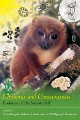 Chimeras and Consciousness