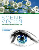 Scene Vision: Making Sense of What We See